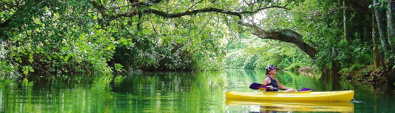 Vanuatu Ecotours kayaking